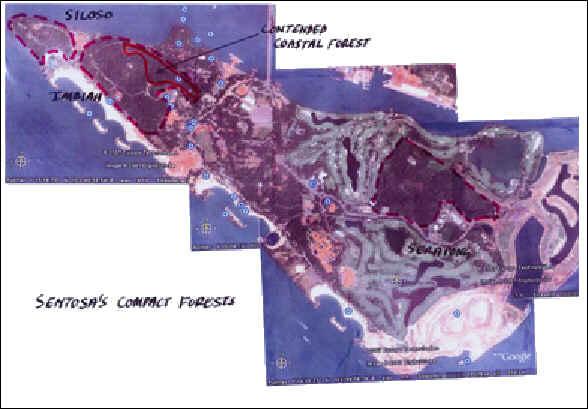 Sentosa Coastal Forest Copyjpg - Singapore map 1990